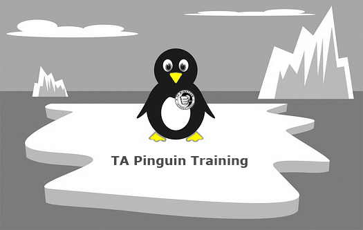 TA Pinguin Training